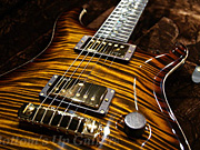 PS#2410 McCarty -Rosewood Limited- Tree of Life inlay