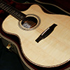 Private Stock #2614 Acoustic Angelus Cutaway 【Bearclaw Spruce, Cocobolo Side & Back】