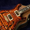 Paul Reed Smith(PRS) {BUG} PS#3087 Hollowbody with Piezo 【2011 NAMM SHOW 展示モデル!】