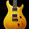 PRS 30th Anniversary Custom24 Artist Package -Honey-